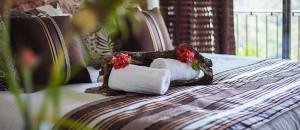 hacienda-buenavista-towel